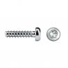 """REMFORM® II """"HS"""" screw pan head RHS81P TORX®plus"""